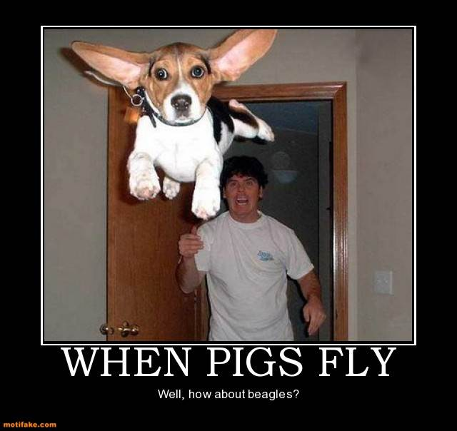 When Pigs Fly Dog Animal Fly Beagle Demotivational Posters