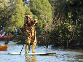 the life of pi...mullumbrunz paddle [ 400SUP,s ]