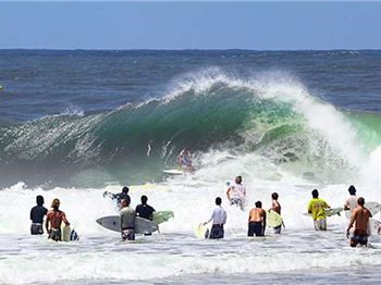 Crowded House - What needs to be done about Snapper? - Surfing News