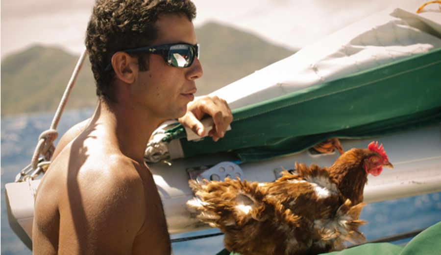 Man sailing around the world with his pet CHICKEN! | Seabreeze