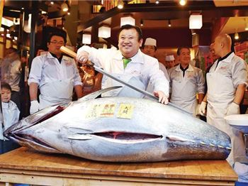 Would you pay $870k for a Tuna? This guy did! - Fishing News