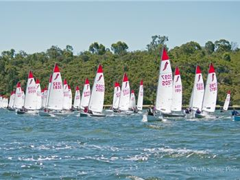 55 Sabres Swarm the Swan - Sailing News