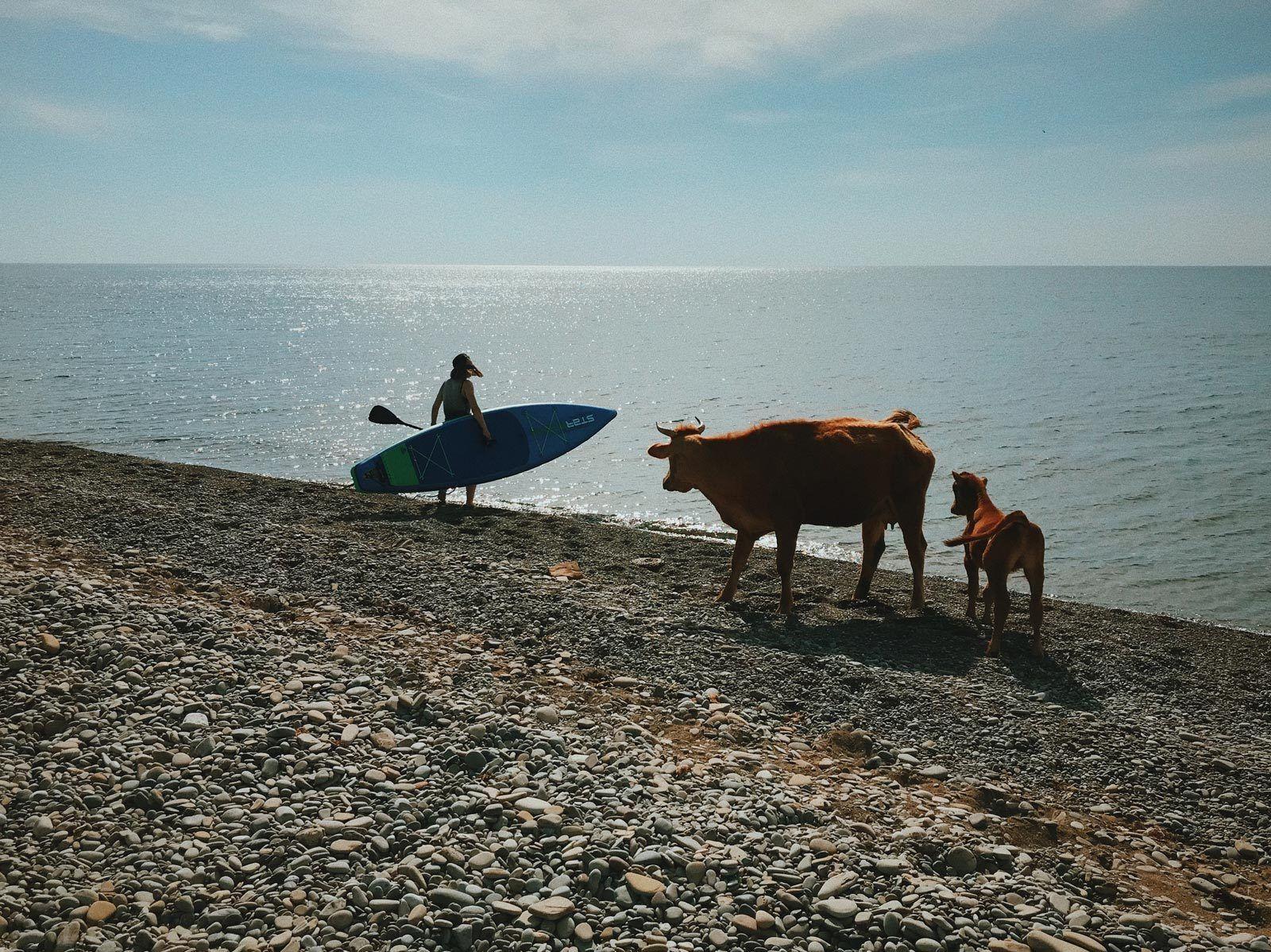 julia-karpacheva-paddleboarding-russia-black-sea-copws-on-the-seaside