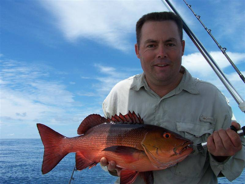 Ciguatera what is it seabreeze for Types of red fish