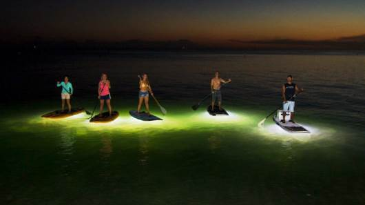 Night Suping Gets Interesting With Under Board Lights