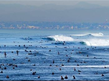 Tips for surfing in a crowded line-up. - Surfing News