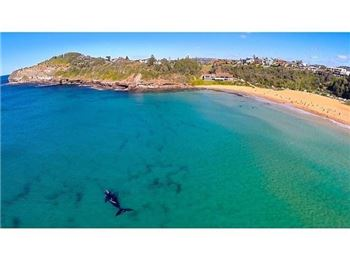 Incredible Aerial Surfing Footage from Sydney - Surfing News