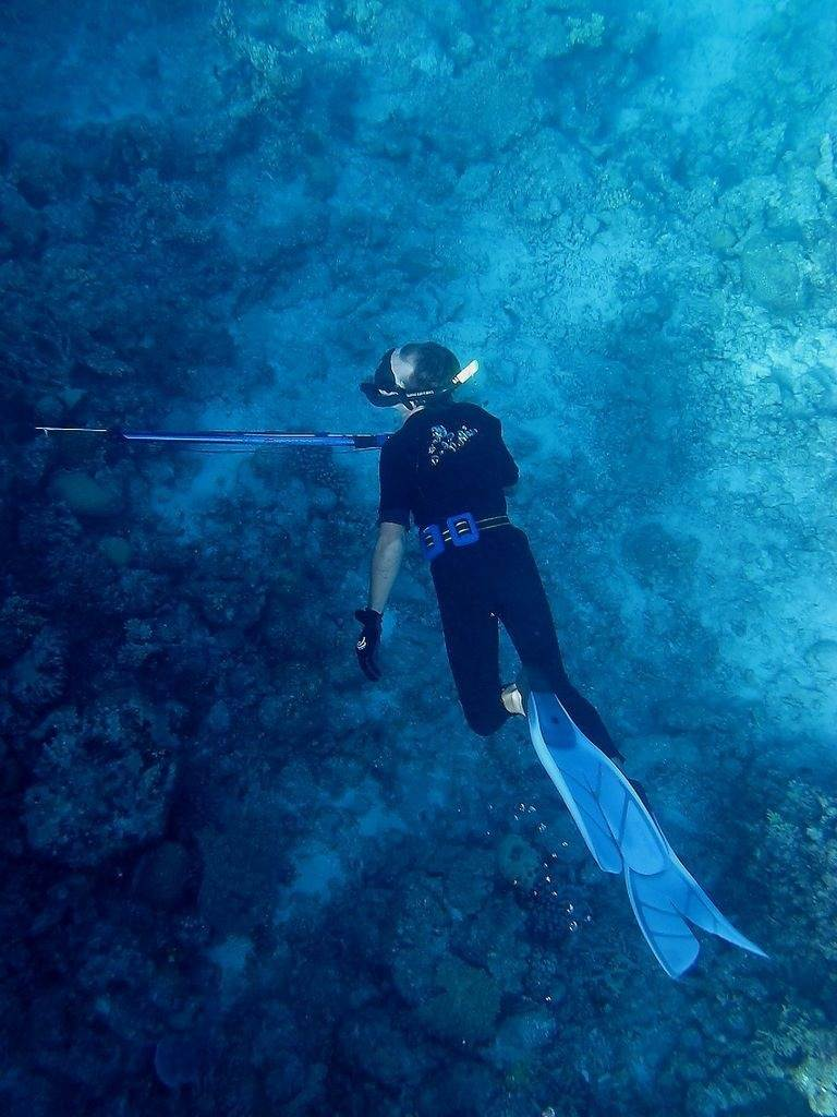 Where to Get Hooked on Spearfishing